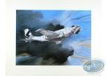 Affiche Offset, Trilogie Nikopol (La) : Bilal, Avion (grand)