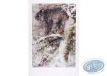 Affiche Offset, Le lynx