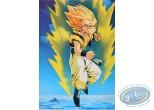 Affiche Offset, Dragon Ball Z : Dragon Ball Z n°9