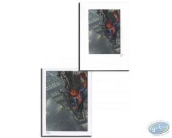 Spiderman (puzzle)