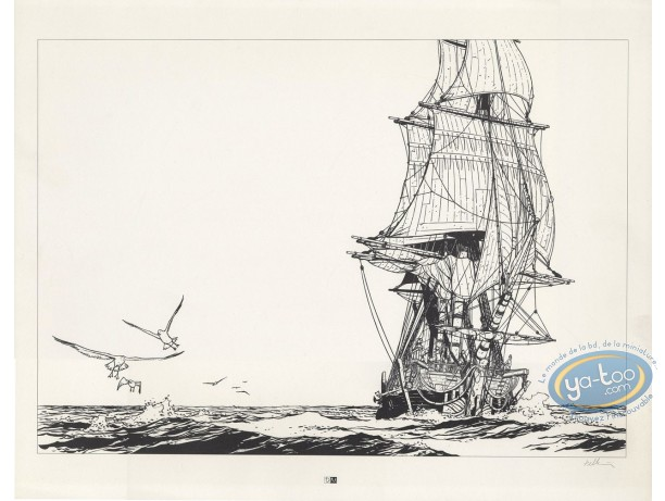 Offset Print, Epervier (L') : The Jellyfish