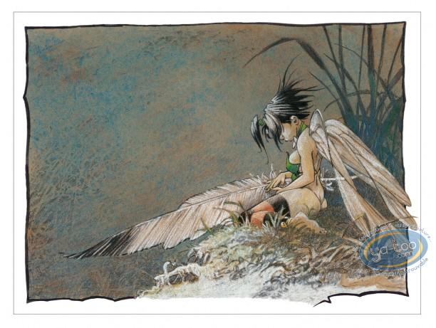 Offset Print, Peter Pan : Dream of a Summer Night