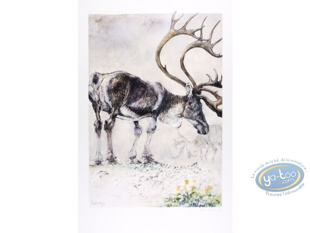 Offset Print, The reindeer (signed)