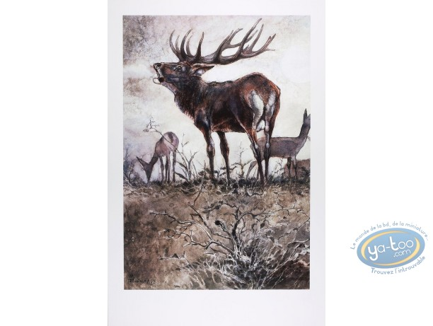 Offset Print, The deer