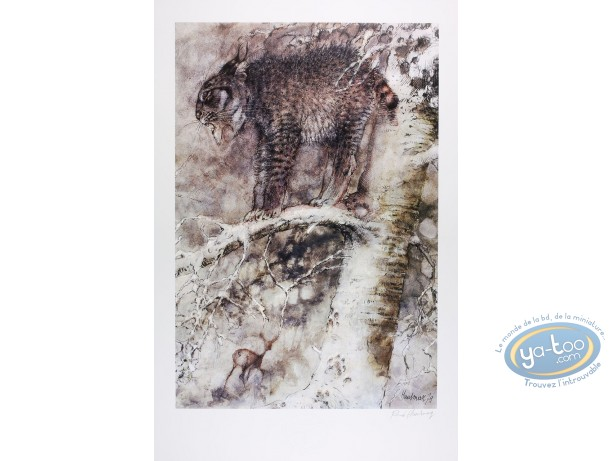 Offset Print, The lynx (signed)