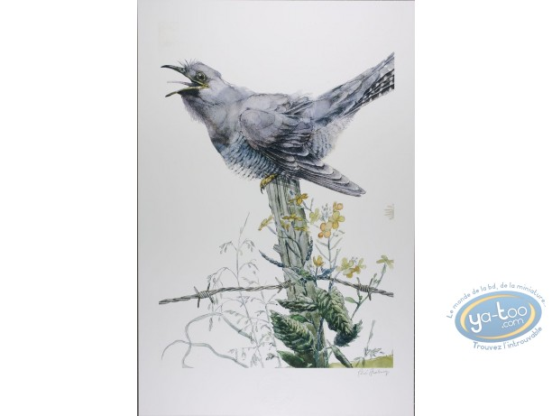 Offset Print, The cuckoo (signed)
