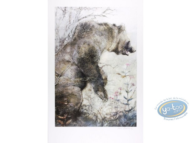 Offset Print, The grizzly (signed)
