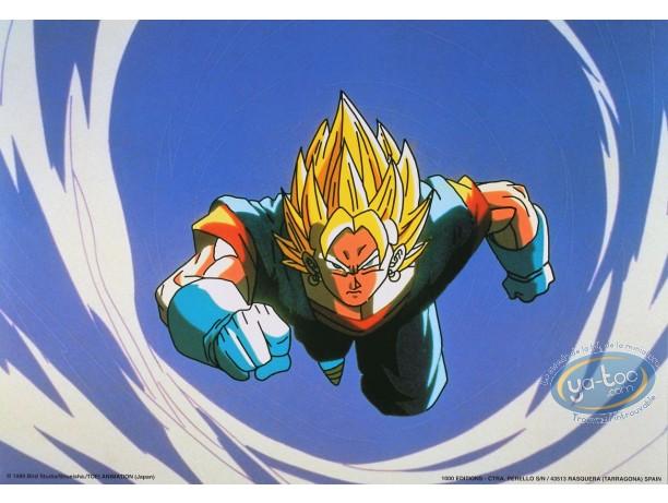 Offset Print, Dragon Ball Z : Dragon Ball Z n°11