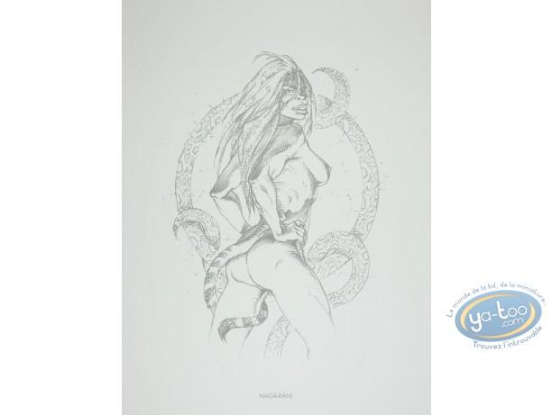 Offset Print, Amazones : Nagà-Ràni
