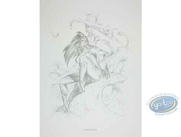 Offset Print, Amazones : Ginko-Biloba