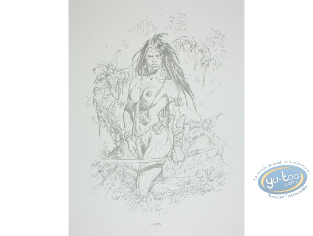 Offset Print, Amazones : Cuivre
