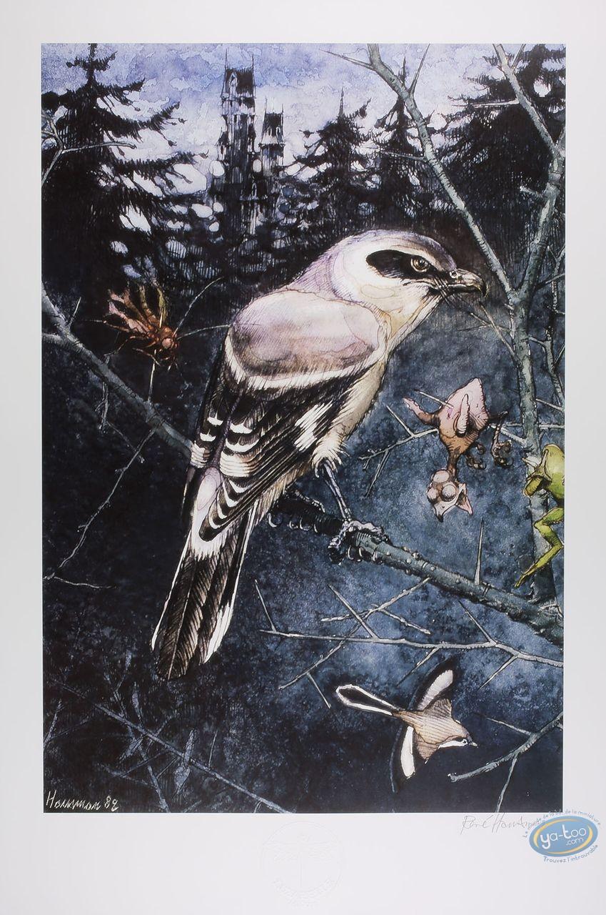 Offset Print, The shrike (signed)