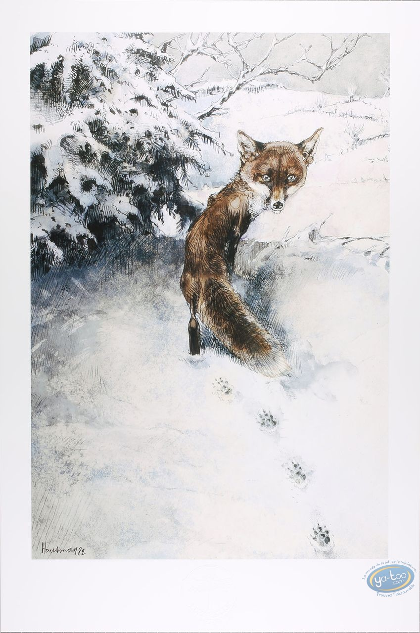 Offset Print, The fox