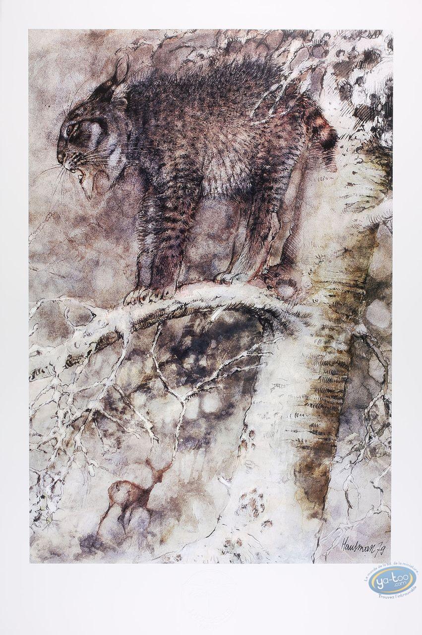 Offset Print, The lynx