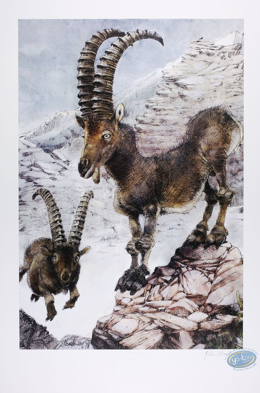 Offset Print, The ibexes (signed)