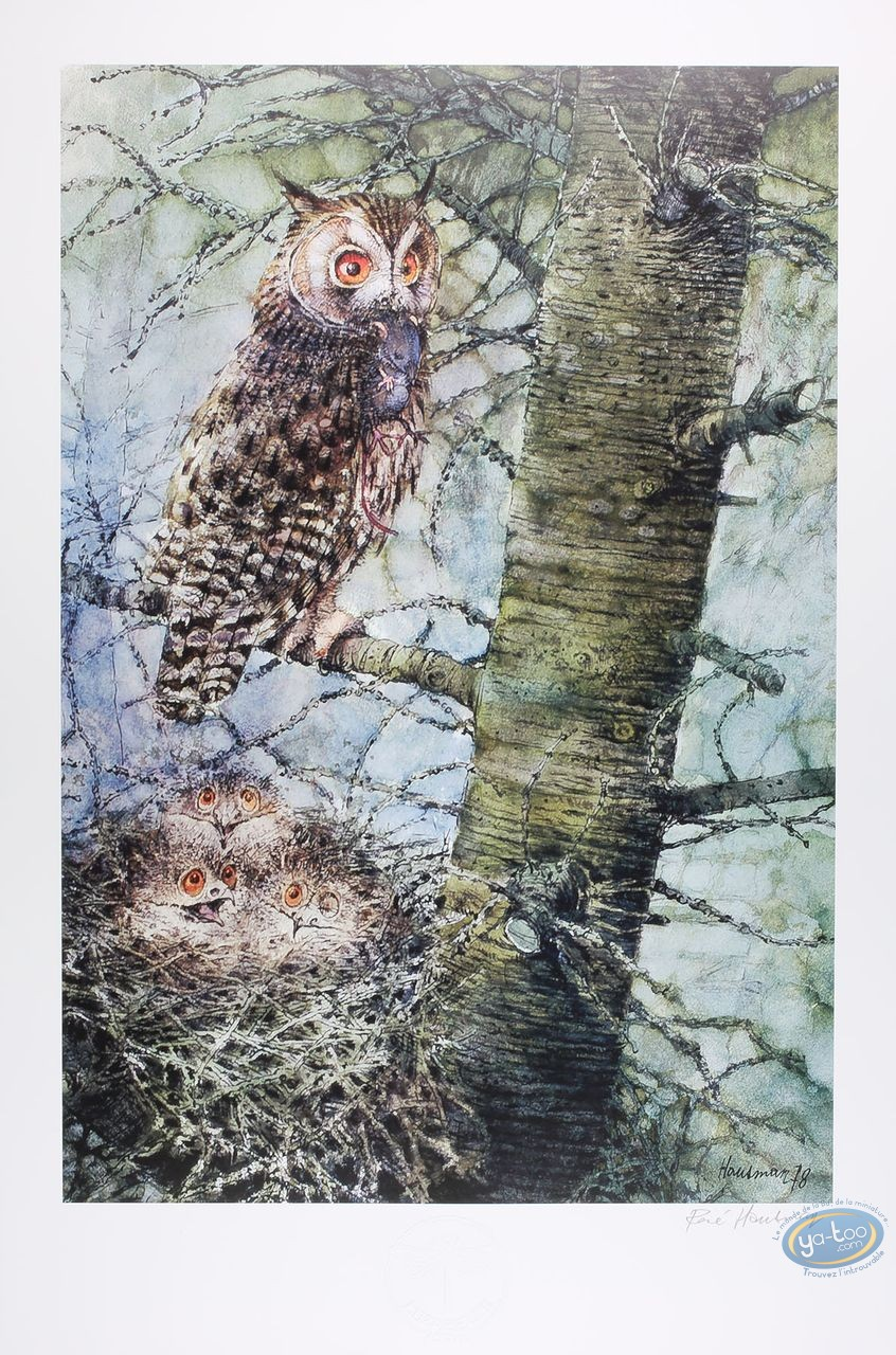 Offset Print, The long eared owl (signed)