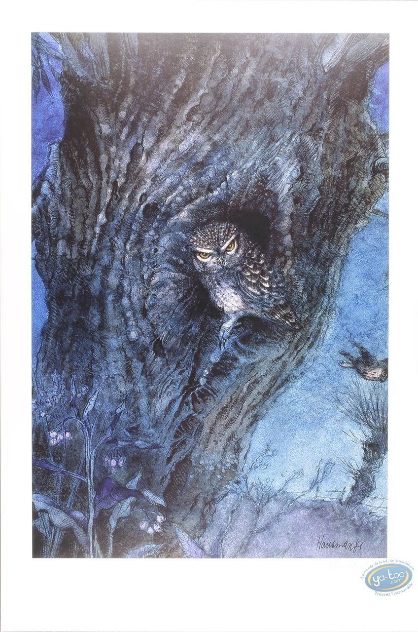 Offset Print, The owl (signed)