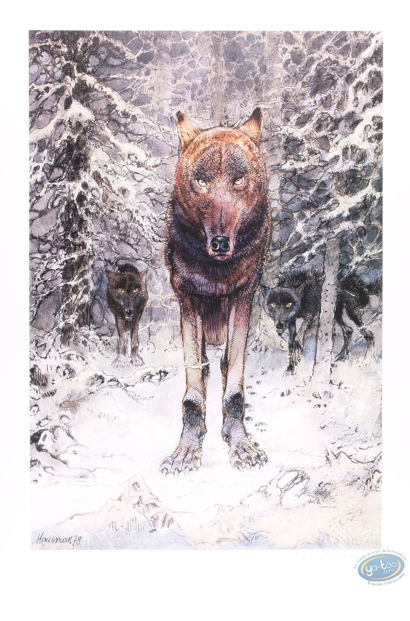 Offset Print, The wolf (signed)