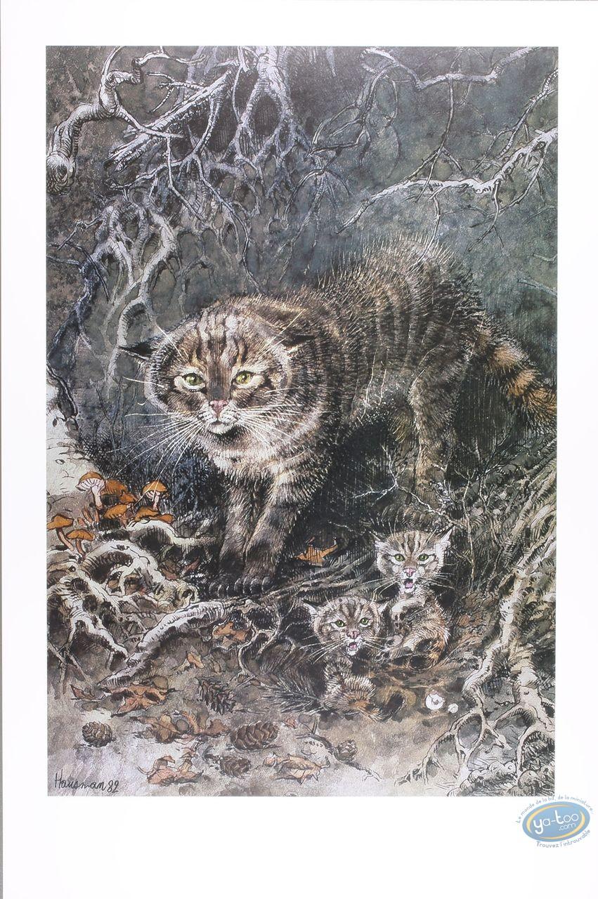 Offset Print, Wildcat