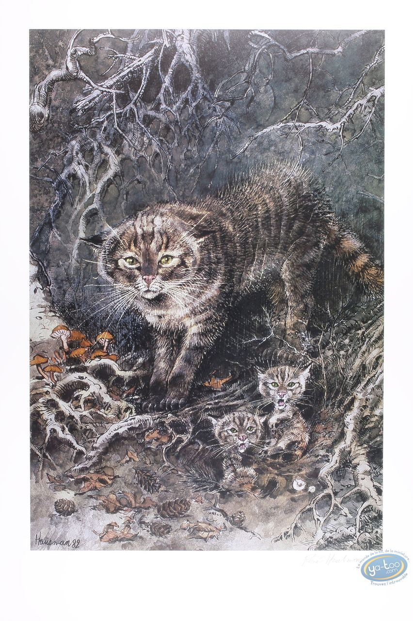 Offset Print, Wildcat (signed)