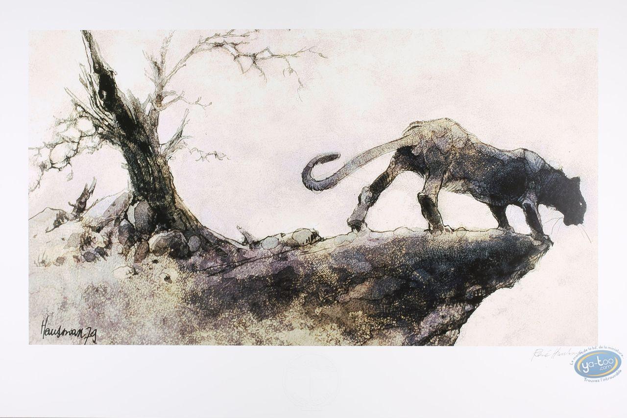 Offset Print, Puma (signed)