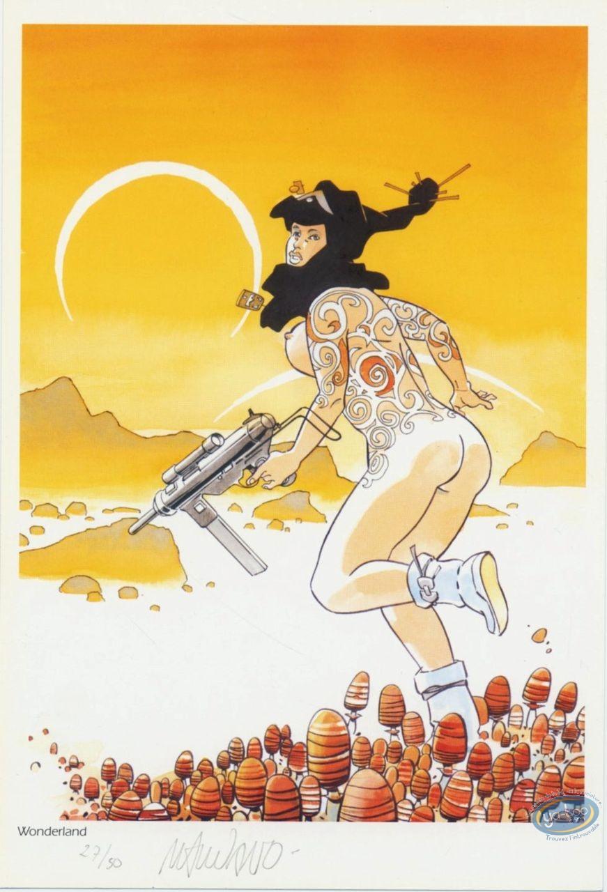 Bookplate Offset, Guerre Eternelle (La) : Race in mushrooms
