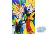 Offset Print, Dragon Ball Z : Dragon Ball Z n°7