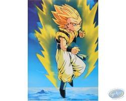 Dragon Ball Z n°9