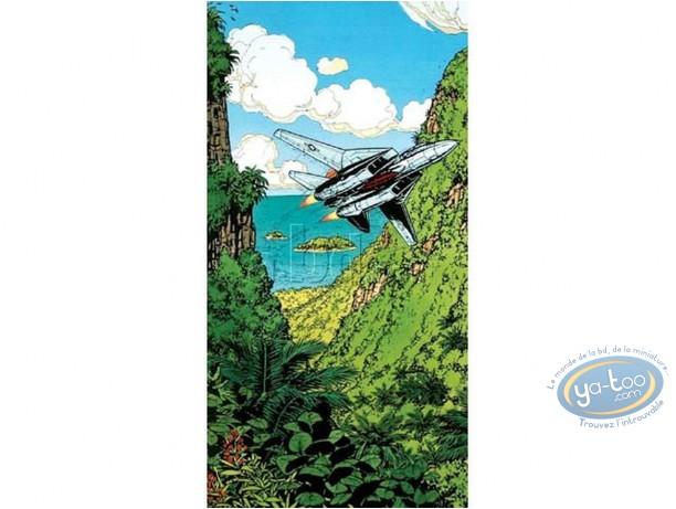 Affiche Offset, Buck Danny : F-14 Tomcat