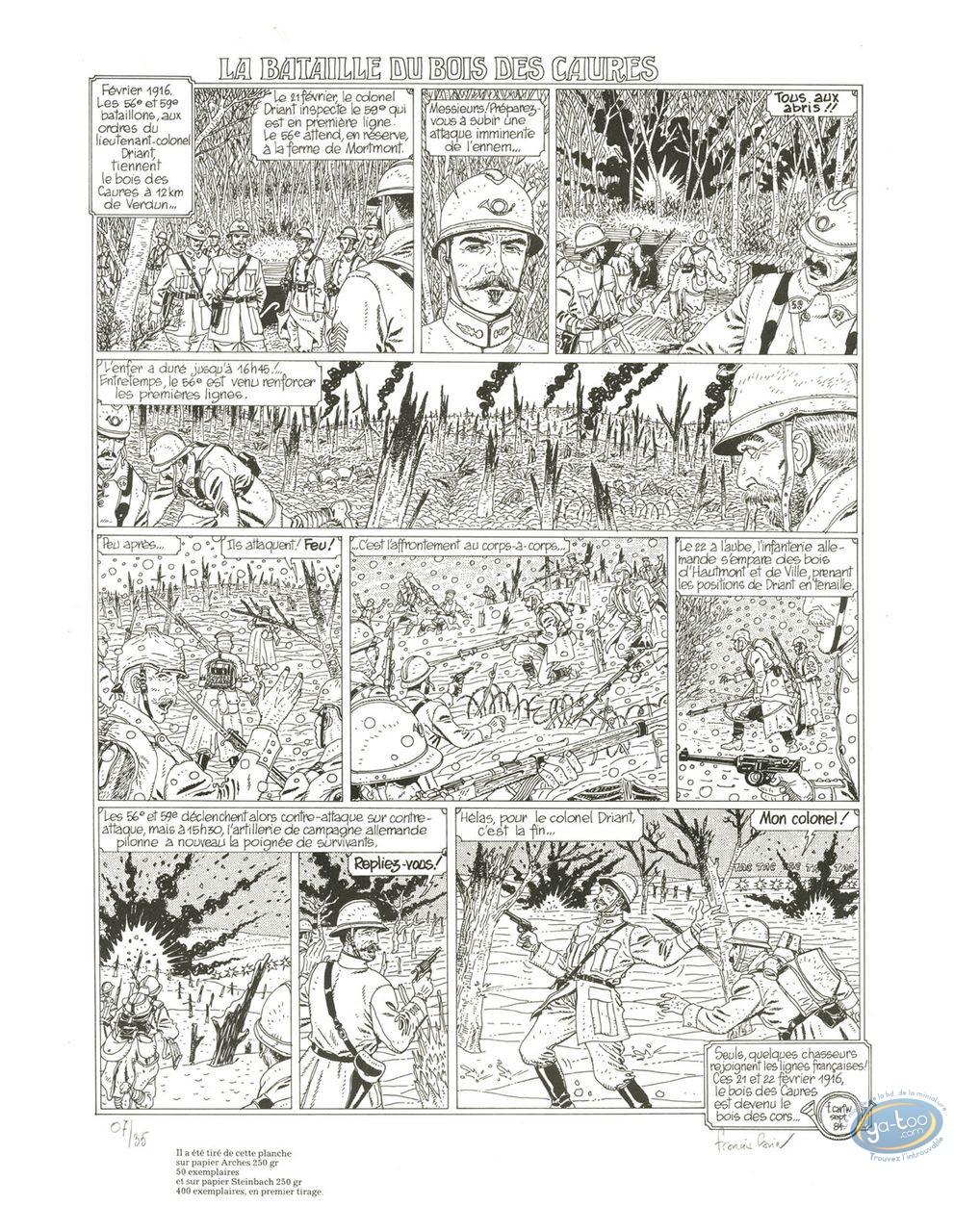Affiche Sérigraphie, Bataille du Bois des Caures (La) : La bataille du Bois des Caures