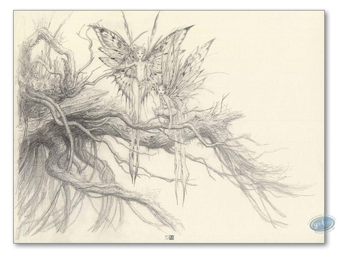 Affiche Offset, Féerie : Fées sur branche