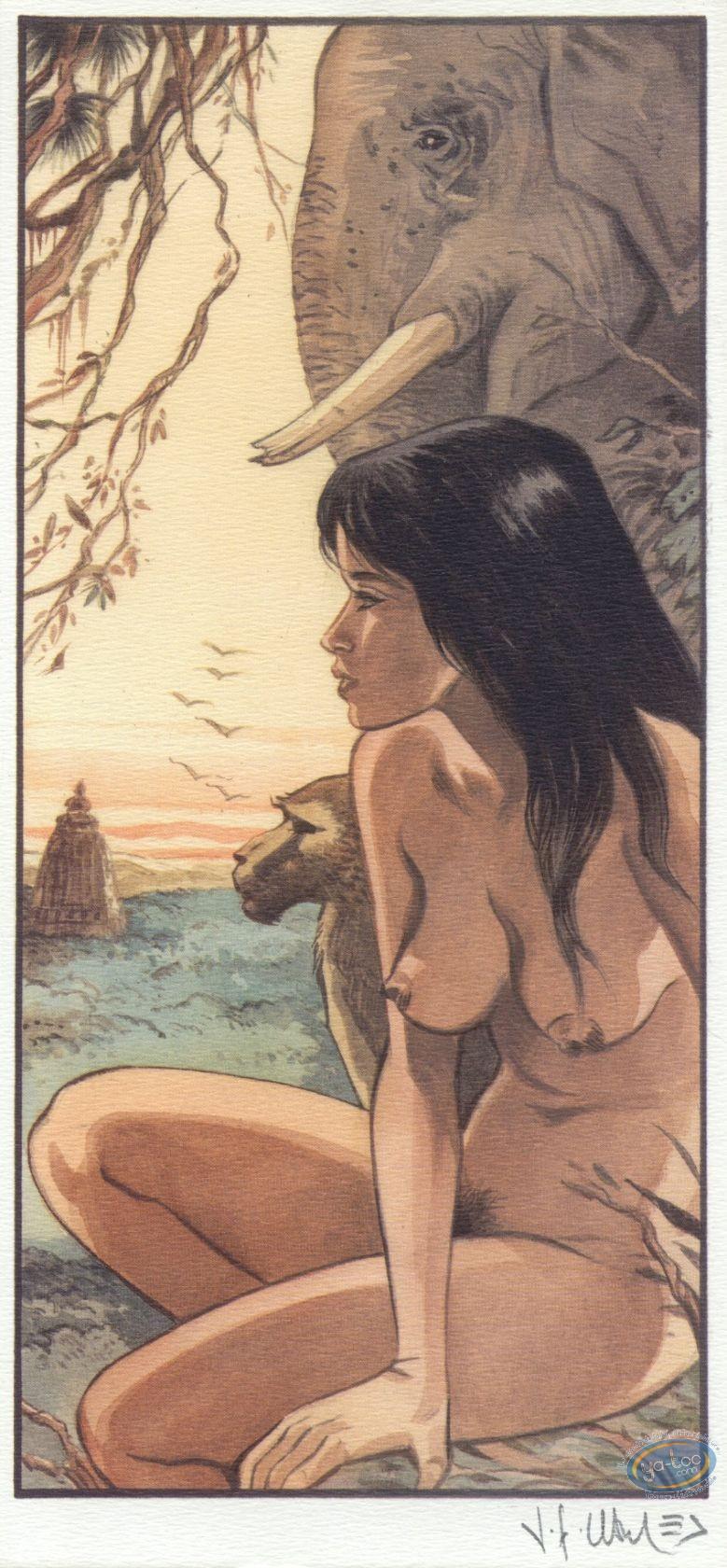 Ex-libris Offset, India Dreams : Jungle