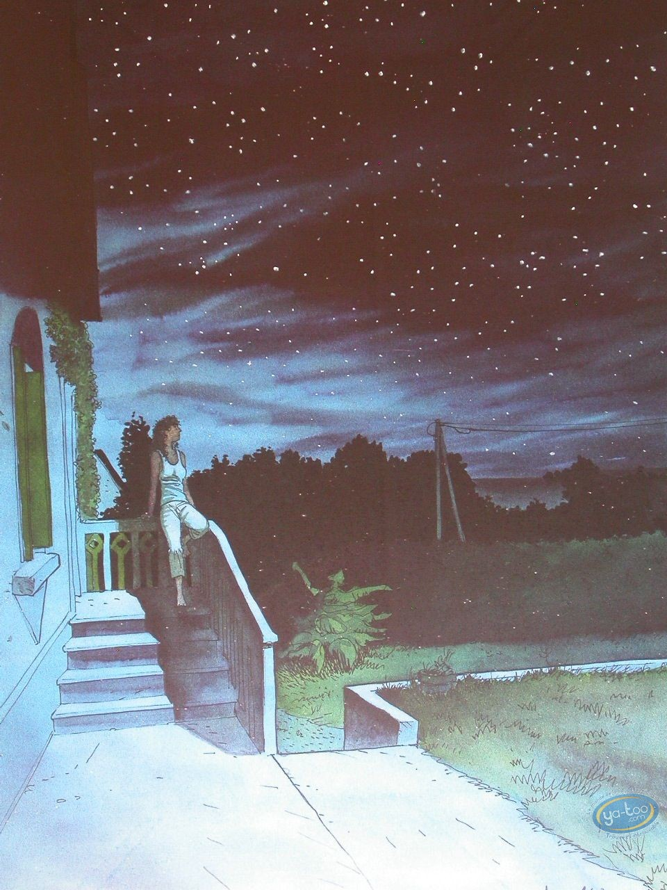 Affiche Offset, Night Fall