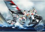 Lithographie, Illustrateur : Coupe de l'America - Alinghi 2