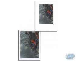 Spiderman (puzzle)
