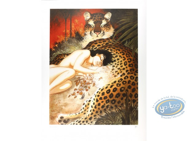 Serigraph Print, Zoo : Zoo The belly of a panther