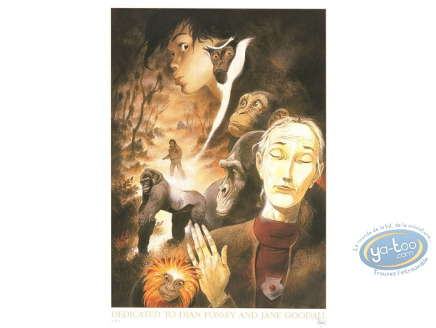 Offset Print, Zoo : Tribute to Diane Fossey