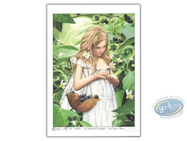 Bookplate Offset, Recherche de la Mandragore (A la) : Young Elf