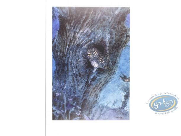 Offset Print, The owl