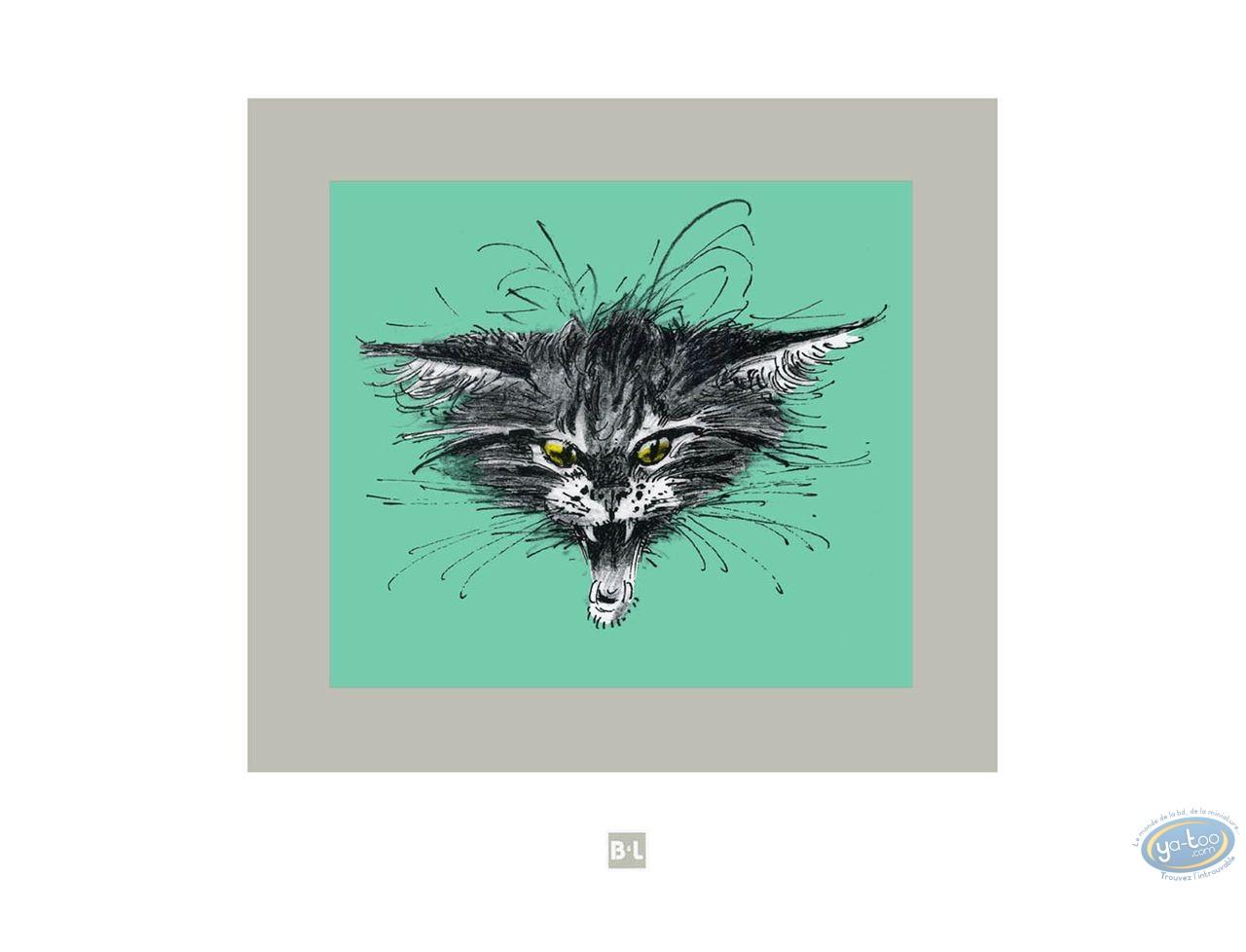 Offset Print, Cat