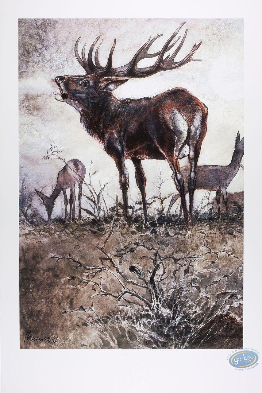 Offset Print, The deer