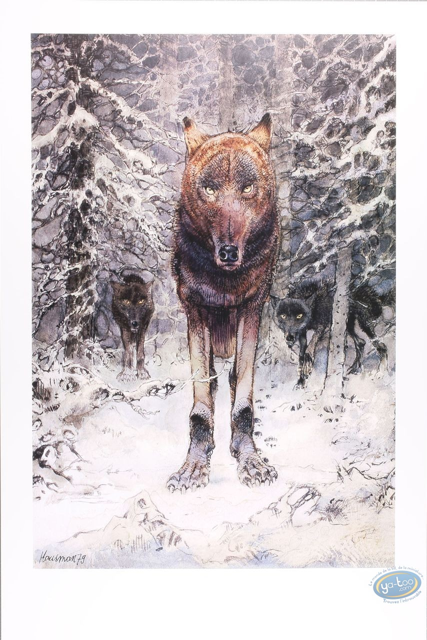 Offset Print, The wolf