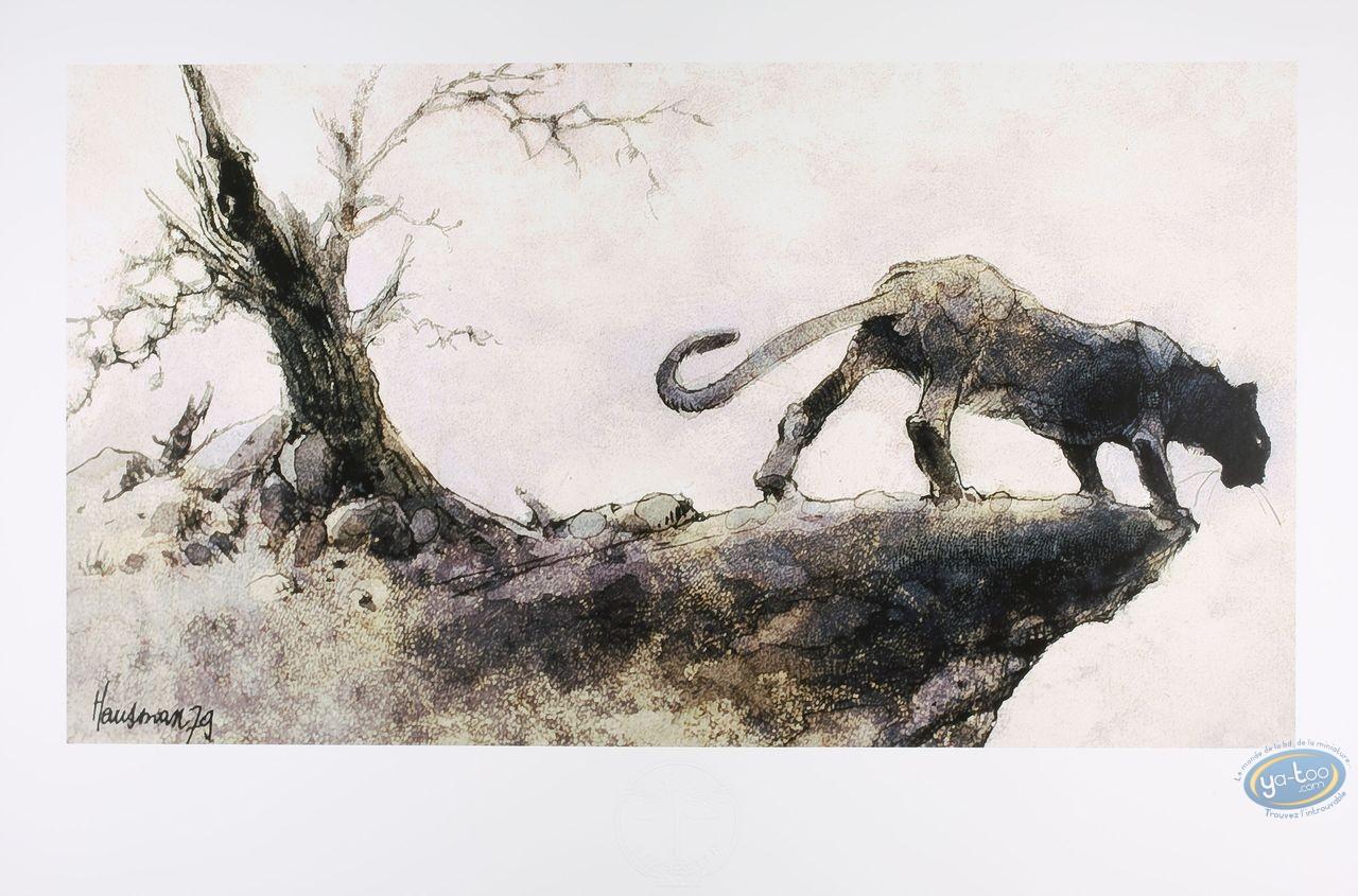 Offset Print, Puma