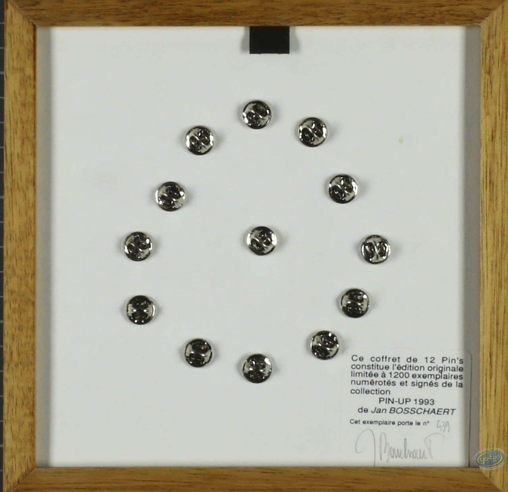 Pin's, Pin-Up : Frame, assortment pins 1993