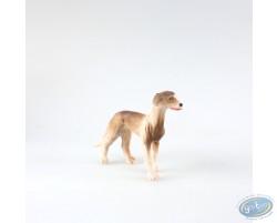 Dog greyhound