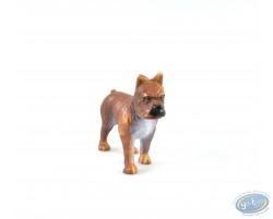 Dog mastiff