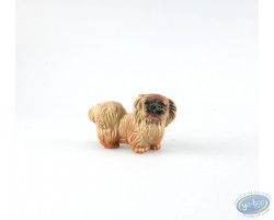 Dog chitsu