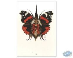 Fairy Boa Bolga