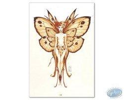 Fairy Eyres