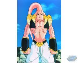 Dragon Ball Z n°1